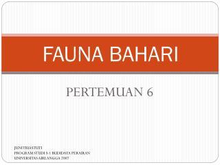 FAUNA BAHARI