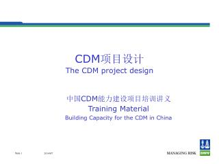 CDM 项目设计 The CDM project design