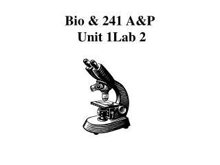Bio & 241 A&P   Unit 1Lab 2