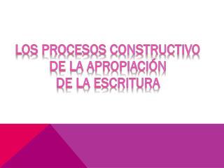 Los procesos constructivo  de la apropiación  de la escritura
