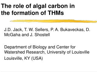 The role of algal carbon in the formation of THMs
