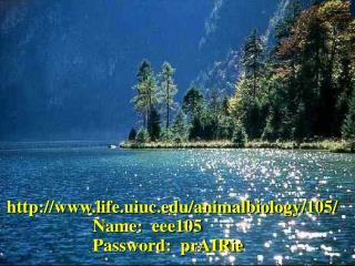 life.uiuc/animalbiology/105/
