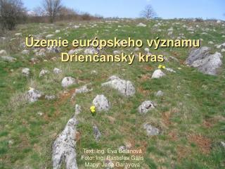 Územie európskeho významu Drienčanský kras