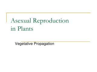 PPT - Asexual Reproduction In Plants PowerPoint ...