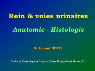 Dr Hamid NEFTI Service de Néphrologie et Dialyse - Centre Hospitalier de Mâcon (71)