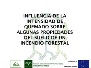 INFLUENCIA DE LA INTENSIDAD DE QUEMADO SOBRE ALGUNAS PROPIEDADES DEL SUELO DE UN INCENDIO FORESTAL