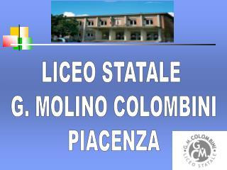 LICEO STATALE  G. MOLINO COLOMBINI PIACENZA