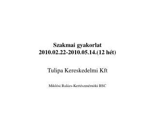 Szakmai gyakorlat 2010.02.22-2010.05.14.(12 hét)