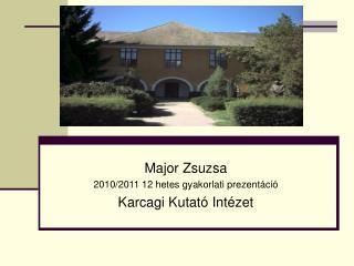 Major Zsuzsa 2010/2011 12 hetes gyakorlati prezentáció Karcagi Kutató Intézet