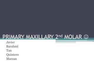 PRIMARY MAXILLARY 2 nd  MOLAR  