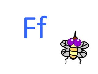 f→ all f all f → eel f eel