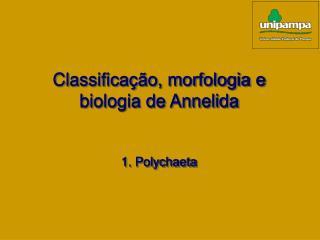 Classificação, morfologia e biologia de Annelida