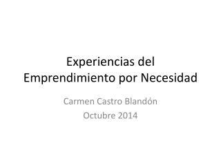Experiencias del Emprendimiento por Necesidad