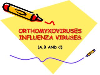 ORTHOMYXOVIRUSES INFLUENZA VIRUSES