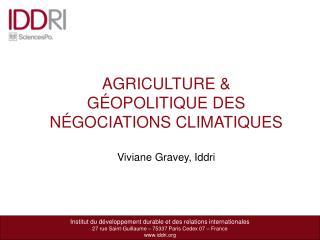 Institut du développement durable et des relations internationales