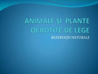 ANIMALE  ŞI  PLANTE OCROTITE DE LEGE