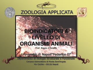 BIOINDICATORI A LIVELLO DI ORGANISMI ANIMALI Prof. Biagio D'Aniello