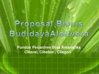 Proposal Bisnis Budidaya A loEvera