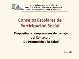 Consejos Escolares de Participación Social