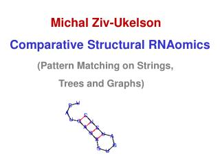 Michal  Ziv-Ukelson Comparative Structural  RNAomics (Pattern Matching on Strings,