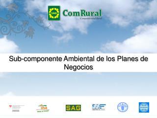 Sub-componente  Ambiental de los Planes de Negocios
