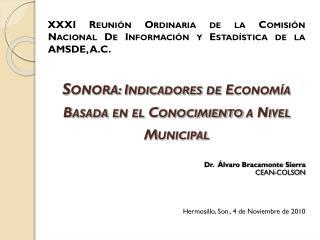 XXXI Reunión Ordinaria de la Comisión Nacional De Información y Estadística de la AMSDE, A.C.