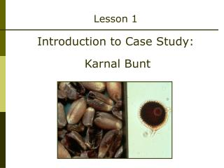 Lesson 1 Introduction to Case Study:  Karnal Bunt