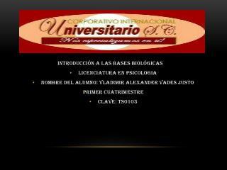 Introducción a las bases biológicas Licenciatura en  psicologia
