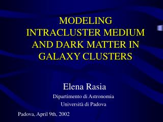 MODELING    INTRACLUSTER MEDIUM AND DARK MATTER IN GALAXY CLUSTERS