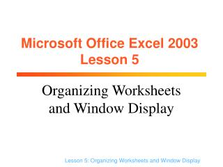 Microsoft Office Excel 2003 Lesson 5