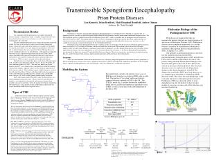 Transmissible Spongiform Encephalopathy Prion Protein Diseases   Lisa Kennedy, Dylan Bradford, Madi Hoagland Henefield,