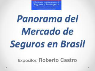 Panorama del Mercado de Seguros en Brasil