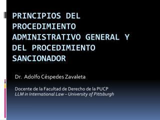 PRINCIPIOS DEL PROCEDIMIENTO ADMINISTRATIVO GENERAL Y DEL PROCEDIMIENTO SANCIONADOR