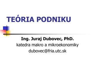 TE�RIA PODNIKU