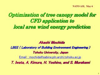 Optimization of tree canopy model for CFD application to local area wind energy prediction