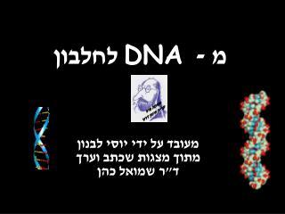 מ - DNA   לחלבון