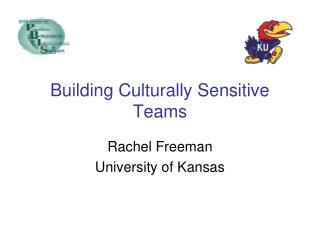 Building Culturally Sensitive Teams