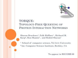 TORQUE:  Topology-Free Querying of Protein Interaction Networks