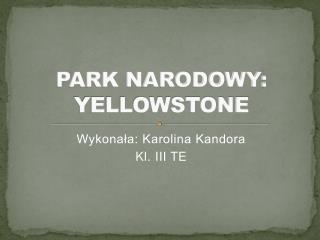 PARK NARODOWY: YELLOWSTONE