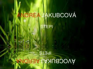 ANDREA  JAKUBCOVÁ