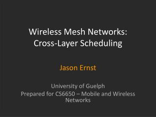 Wireless Mesh Networks:  Cross-Layer Scheduling