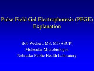 Pulse Field Gel Electrophoresis PFGE Explanation