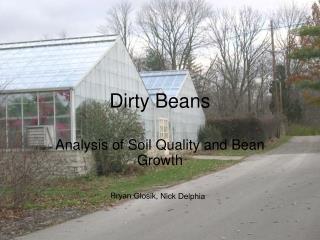 Dirty Beans