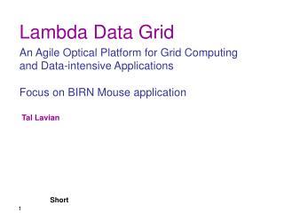 Lambda Data Grid