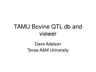 TAMU Bovine QTL db and viewer