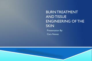 BURN TREATMENT AND TISSUE ENGINEERING OF THE SKIN