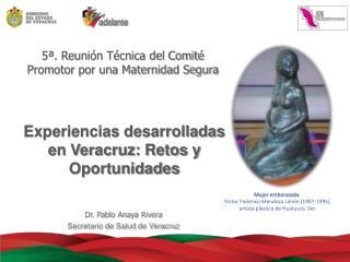 Experiencias desarrolladas en Veracruz: Retos y Oportunidades