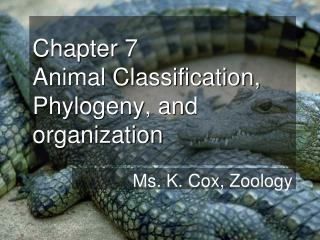 Chapter 7  Animal Classification, Phylogeny, and organization