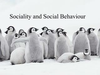 Sociality and Social Behaviour