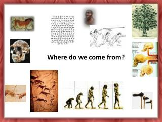 Where do we come from?